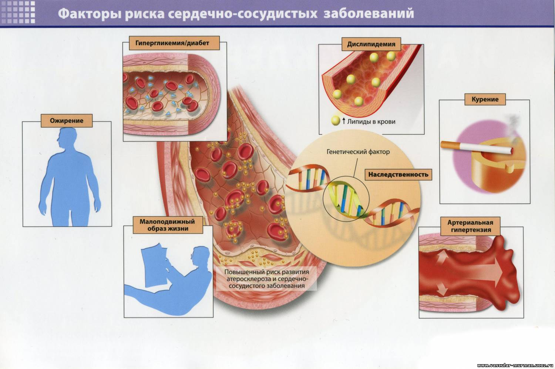 диетолог санкт-петербург отзывы